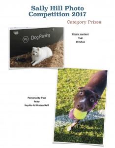 Category prizes 3