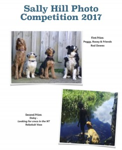 First Prize poster