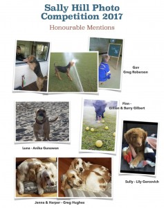 Honourable Mentions 1