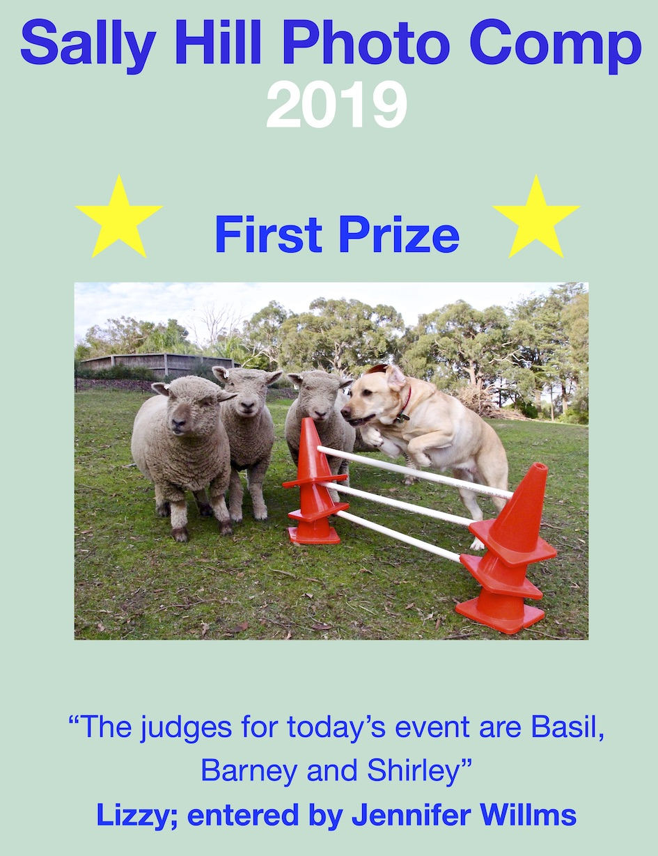 First prize 2019